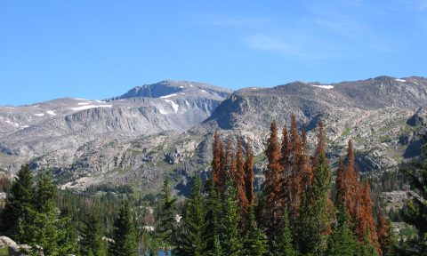 Big Horn Mountains in Wyoming